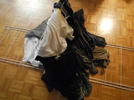 laundryhorse2