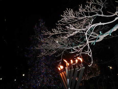 leuchterbaum